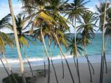 Barbados, een echt paradijs