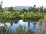 Tasmanië: oase van rust en natuur