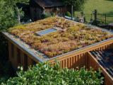 De voordelen en nadelen van een groen dak