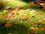 Een gezellige herfst-sfeer binnen en buiten