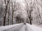 Met de auto op wintersport