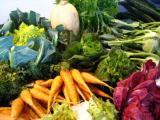 De groentetuin in de winter
