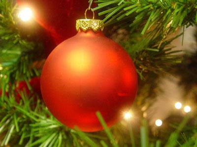 Alles Over De Kerstboom Fantv Nl