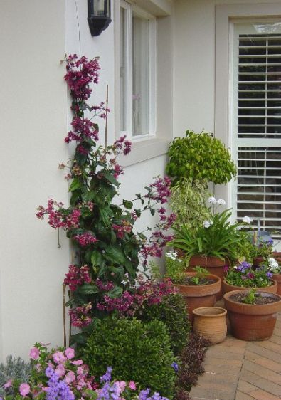 Een steentuin - Tuin marokkaans terras ...