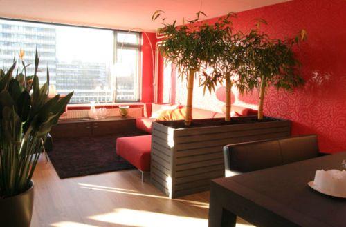 mooi rood is niet lelijk - fantv.nl, Deco ideeën